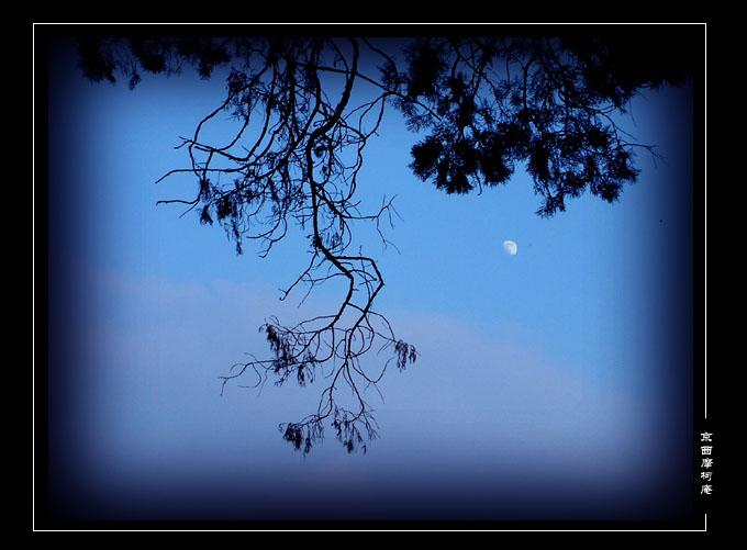 [老狼夜文]蓝色是我的最爱